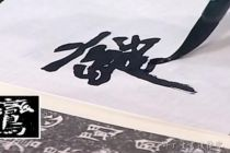 李松老师临摹示范魏碑楷书《李璧墓志》讲座(全12集,每集30分钟)